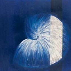 Blauer Nautilus