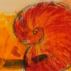 Oranger Nautilus